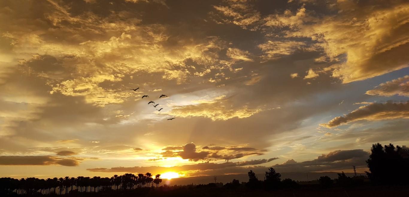 זריחה בפארק המעיינות צילום מוטי שחר