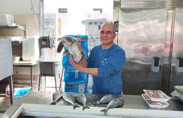 איזה דג מתאים לראש השנה ? המלצות של ממלכת הדגים לבחירת הדג